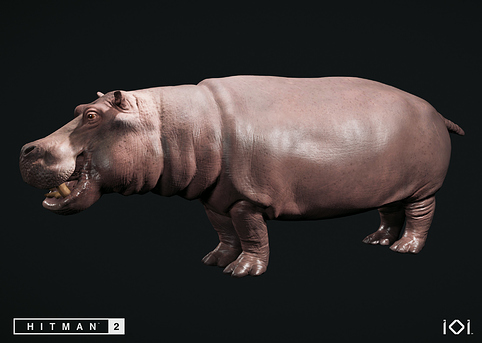 theodor-urhed-hippo-full